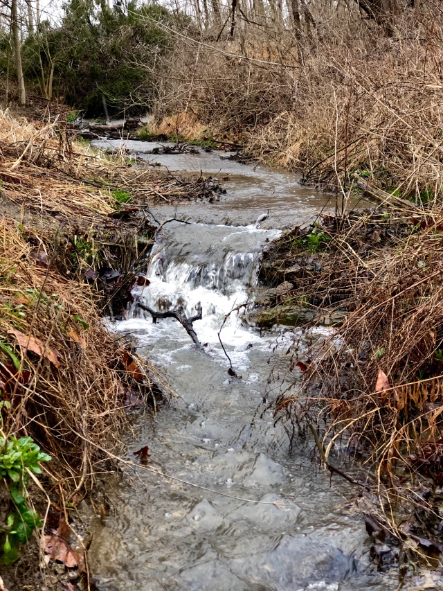 A beautiful stream at the Brecksville Crossing on the Cuyahoga